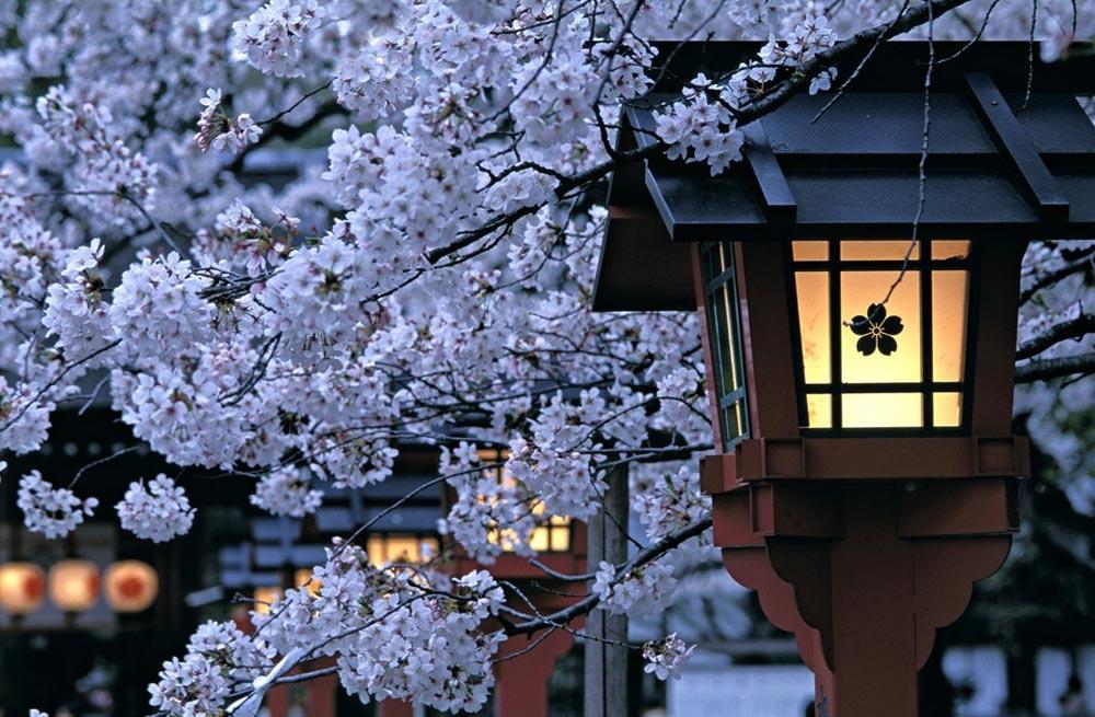 Японки срут после клизмы смотреть 25 фотография