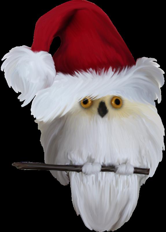 MRD_SnowyDreams-owl-santa.png