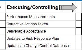 Рис. 1. Группы процессов исполнения, а также мониторинга и управления
