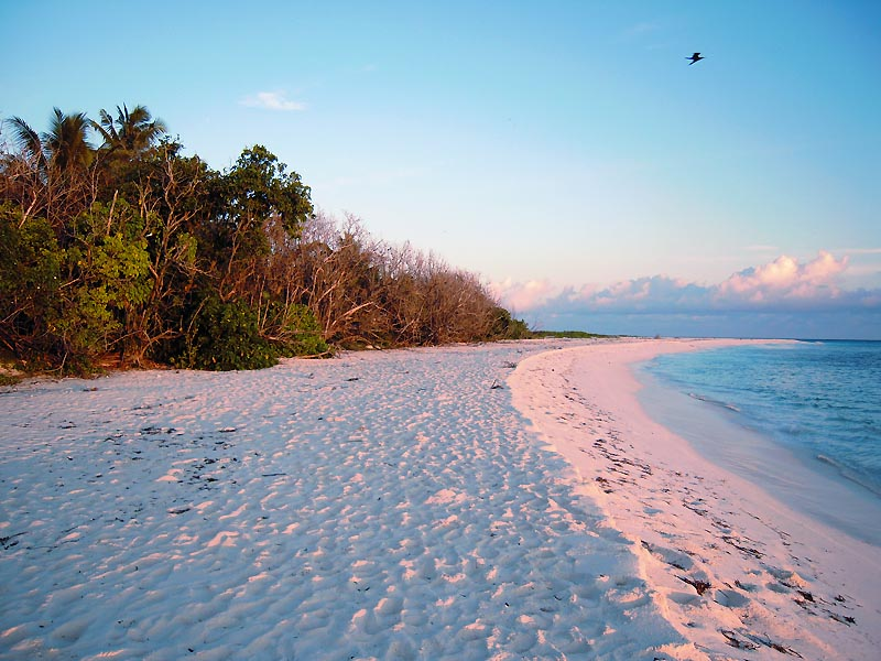 Рассветный розовый песок