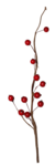 natali_design_xmas_berries.png