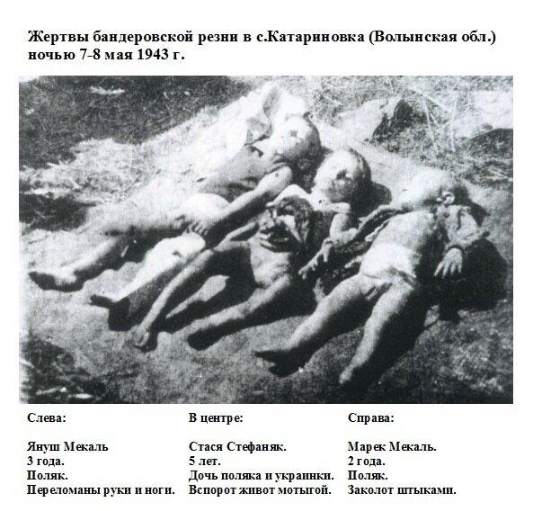 Детишки убитые.jpg