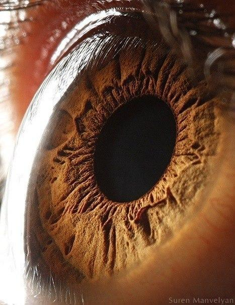 глаз человека макросъемка глазное яблоко радужка 3