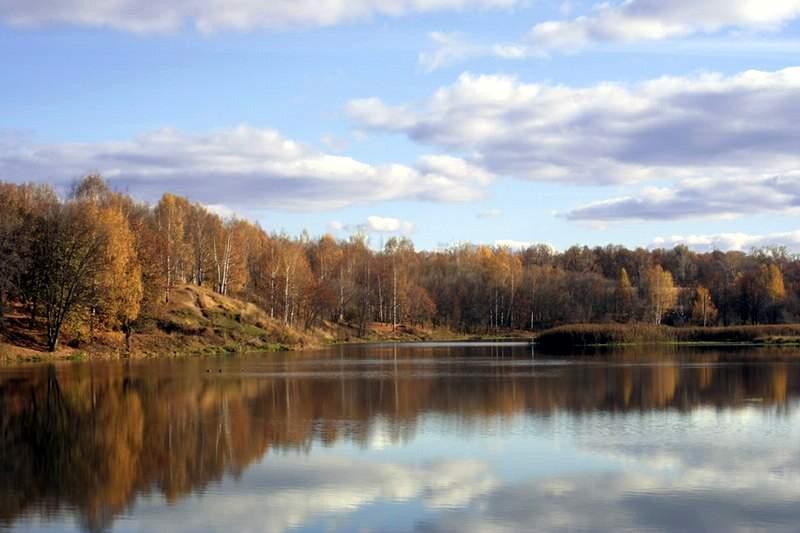 Река Сестра