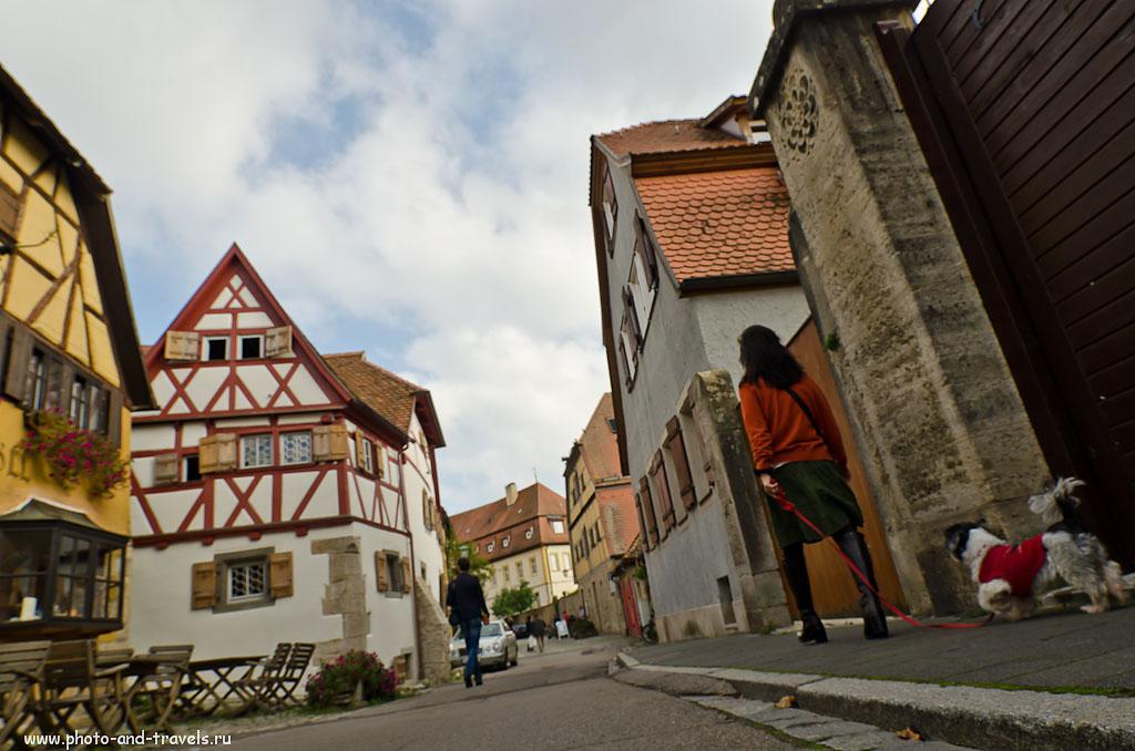 28. Дама с собачкой. Прогулка по городу Ротенбург-на-Таубере. Куда поехать из Франкфурта на выходные.