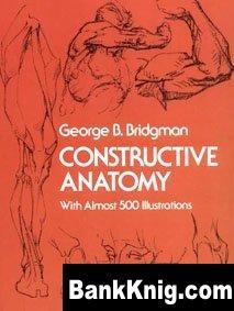 Книга Constructive Anatomy