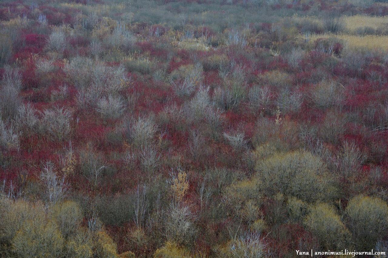 Шведская горка поздней осенью. Гомель