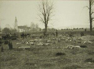 Солдаты специальных частей за уборкой трупов с поля боя у д.Блони.