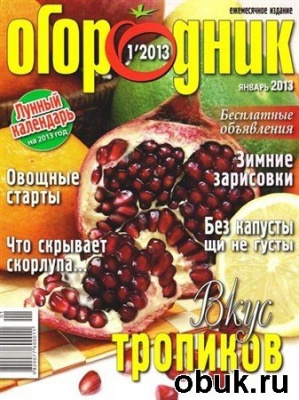Книга Огородник №1 (январь 2013)