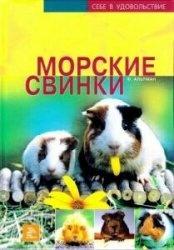 Книга Морские свинки