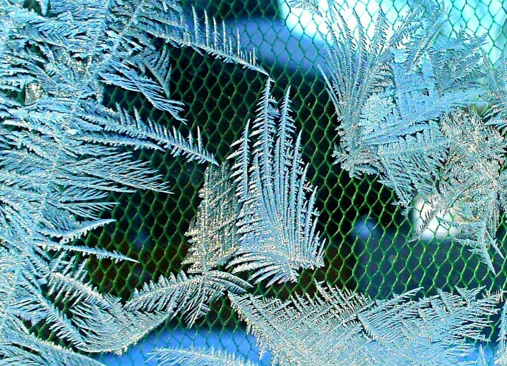 Мороз в деревне