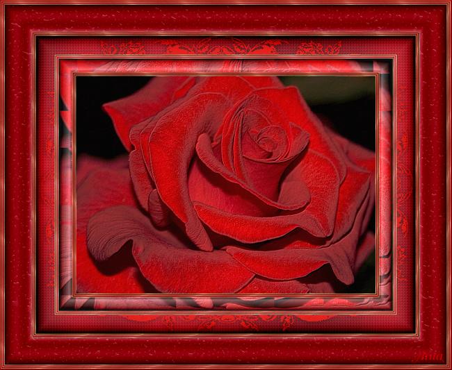 image_5630121219235476600823.png