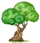 Tree_PNG_Clipart_Picture.png