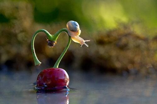 Фоторомантика ко Дню влюбленных