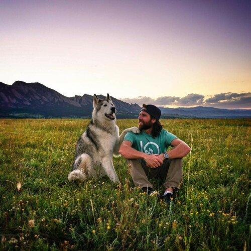 Приключения с собакой