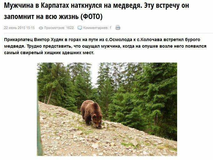 FireShot Screen Capture #2778 - 'Мужчина в Карпатах наткнулся на медведя_ Эту встречу он запомнит на всю жизнь (ФОТО) » Закарпатский корреспондент' - zak-kor_net_susplstvo_8104-muzhchina-v-karpatah-natknulsya-na-me.jpg