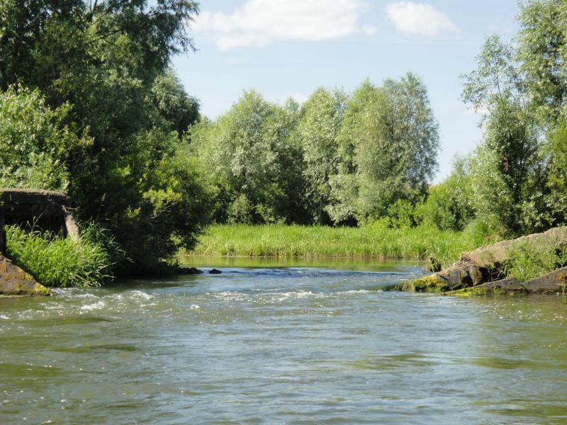 Река Вад