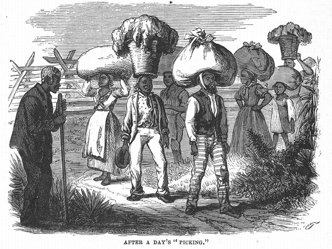 Рабы занимаются переноской хлопка, собранного на полях (штат Южная Каролина, 1880 год)