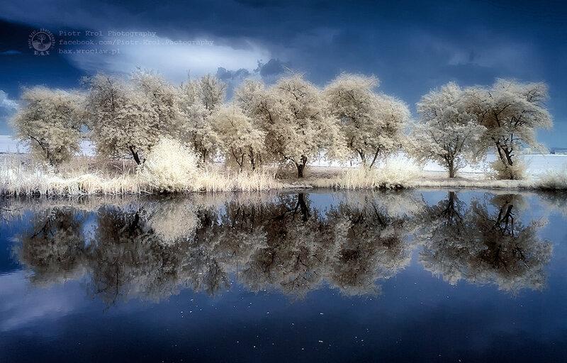 Петр Крол: Белым летом, красным фильтром