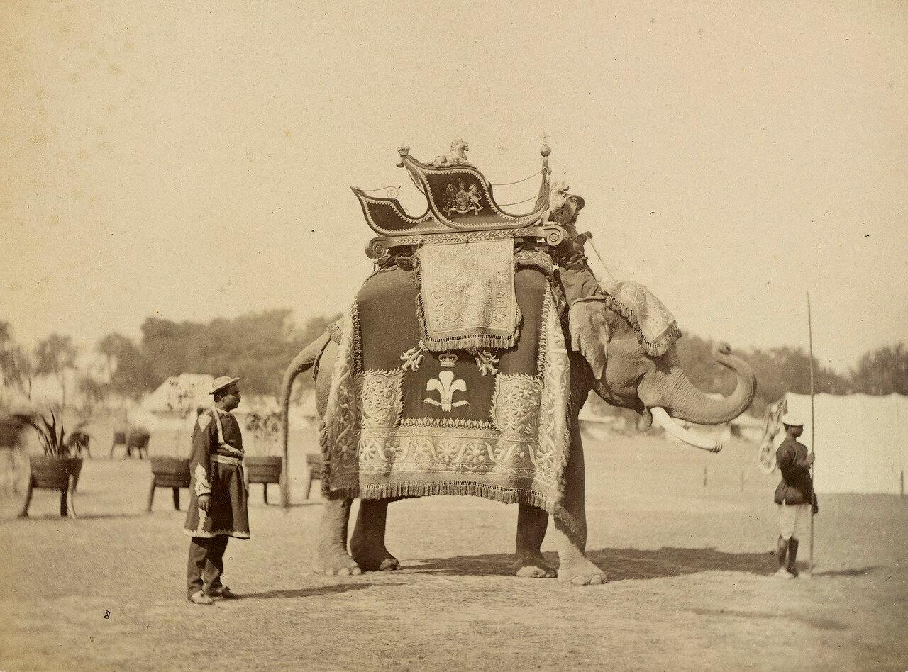 27. Слон принца Уэльского