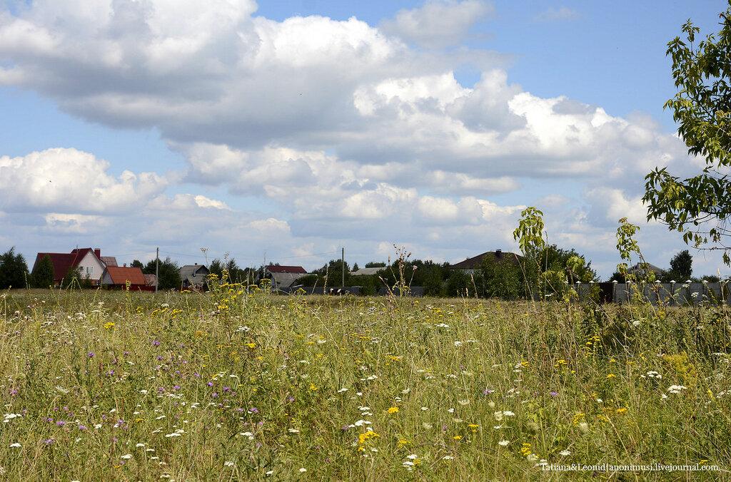Лето деревенское