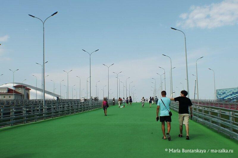 Олимпийский парк, Сочи, 16 июля 2014 года