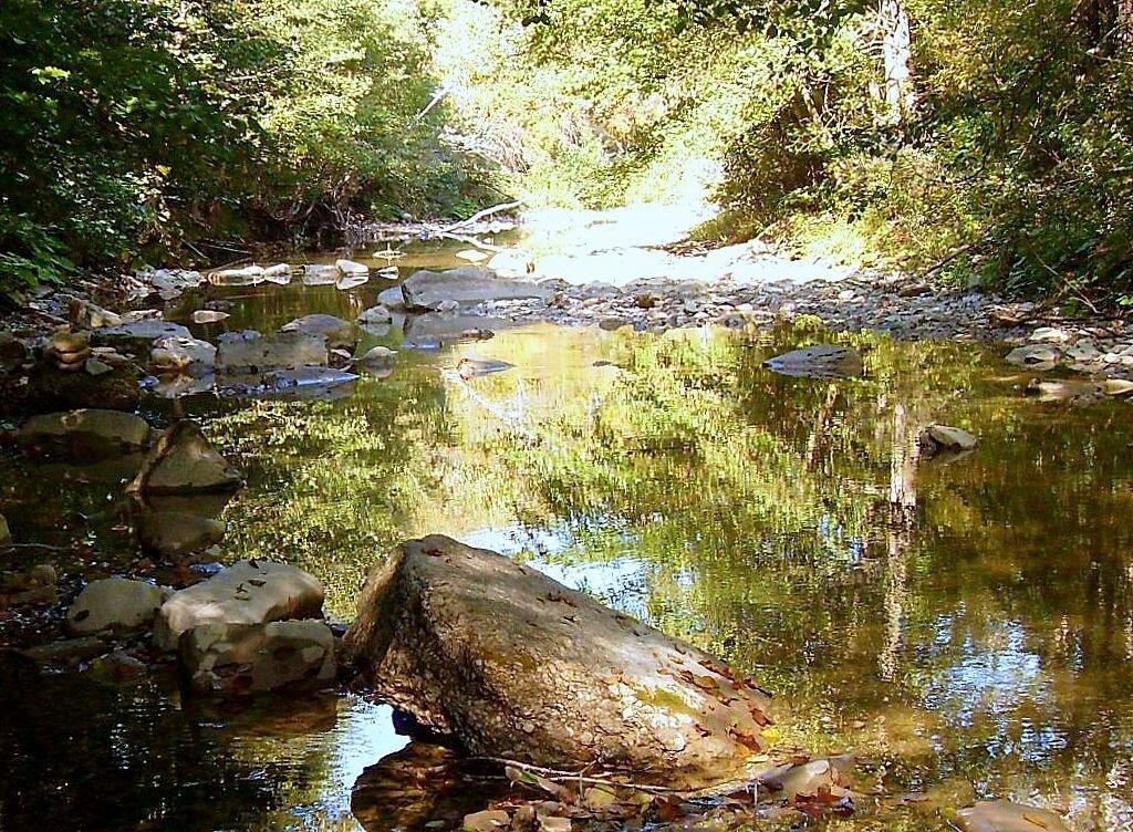 У воды и камней ... 2008 год, под Горячим Ключом, на Природе (168).JPG