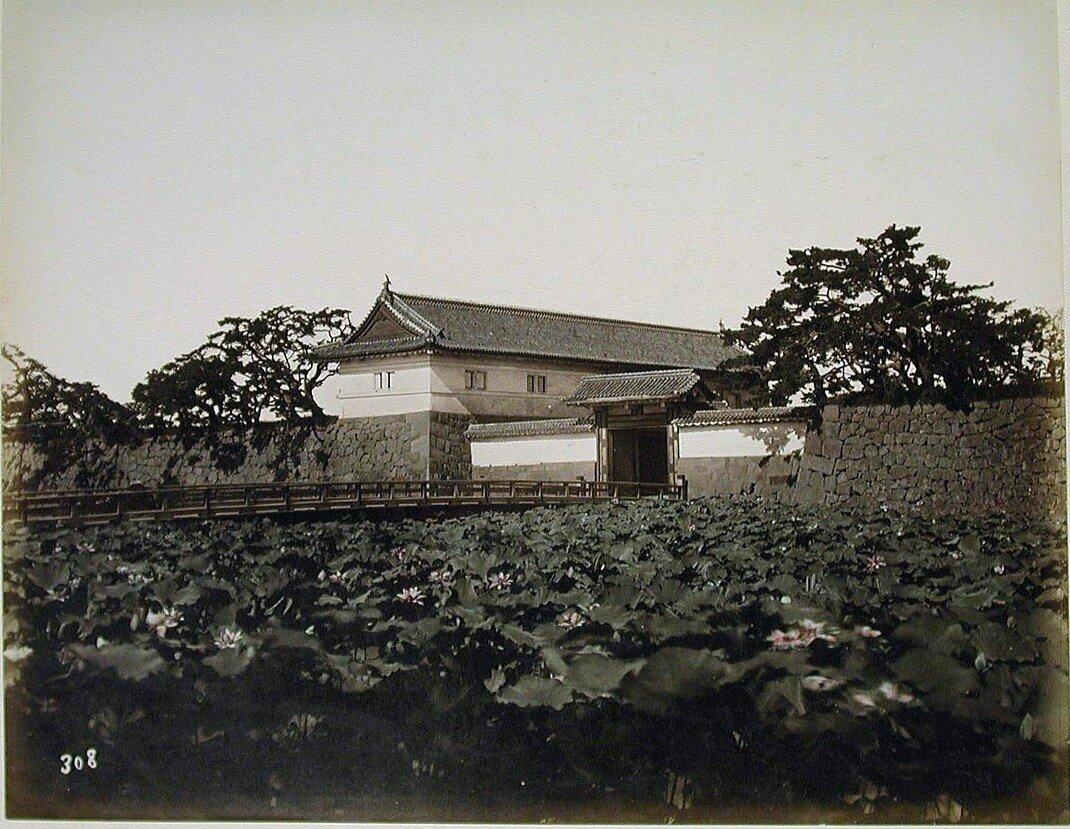 Токио. Замок, ров и лотосы