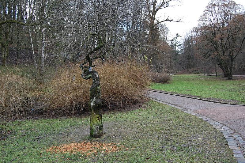 а стрыйском парке