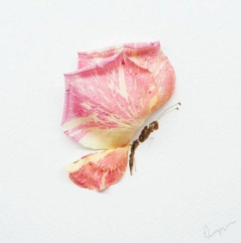 Цветочные композиции Лим Чжи Вэй