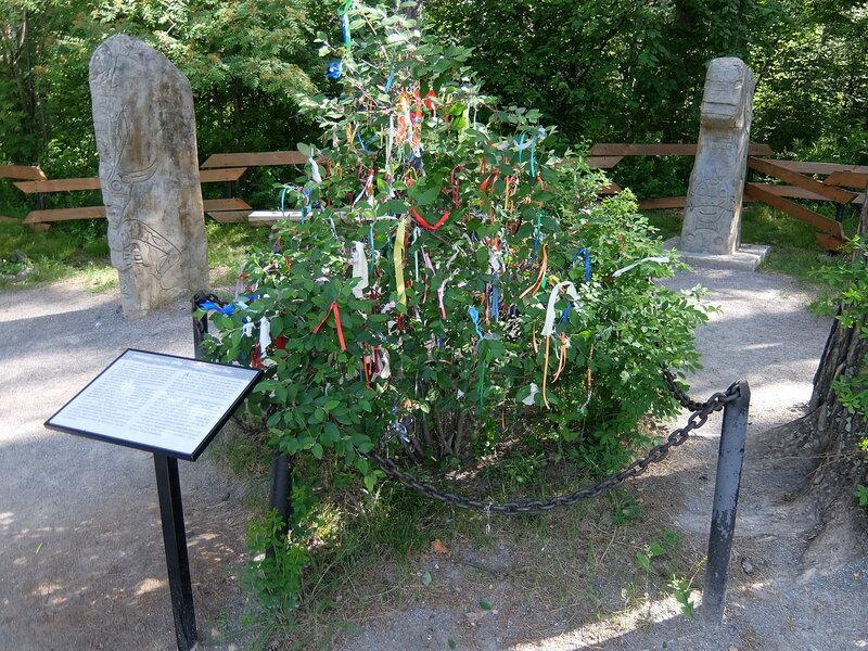 Томская писаница - Священное дерево