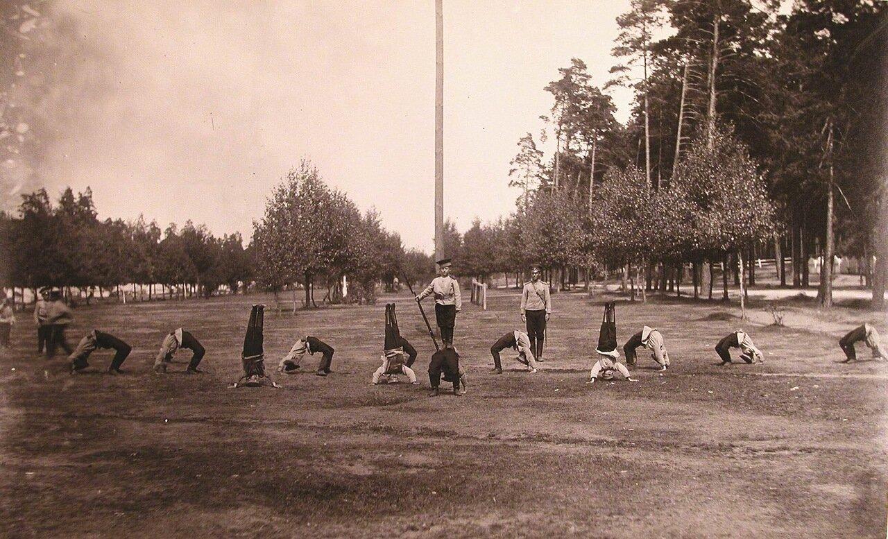 15. Потешные во время занятий гимнастикой на площадке летнего лагеря