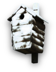 mzimm_snow_wonder_bird_House_sh.png