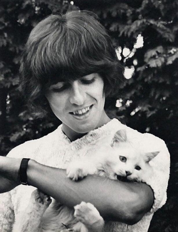 538 Джордж Харрисон и котенок - 1965.jpg