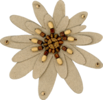 sd_woodland-winter-flower2.png