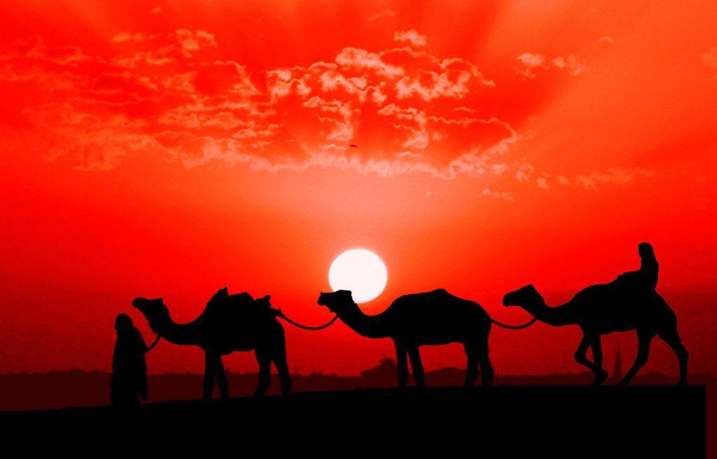 Силуэты Востока от Naveed Mughal