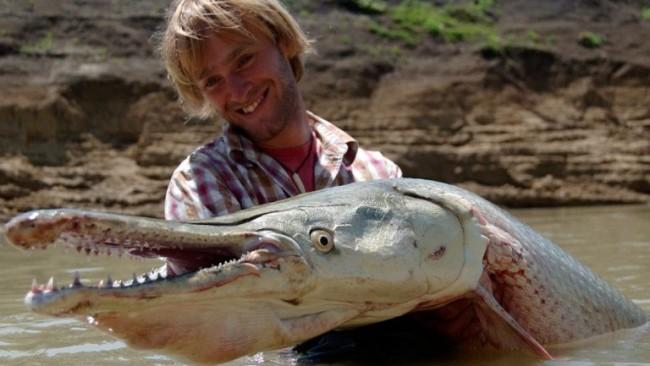 Аллигатор Гар (панцирная щука) считается настоящим монстром. Эта гигантская рыба с экзотичной внешно