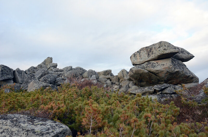 жабооразные камни.jpg