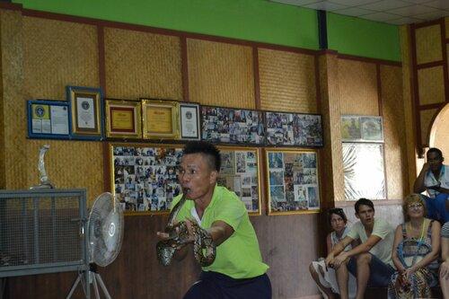 Шоу змей, Таиланд, Пхукет