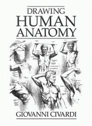 Книга Drawing Human Anatomy