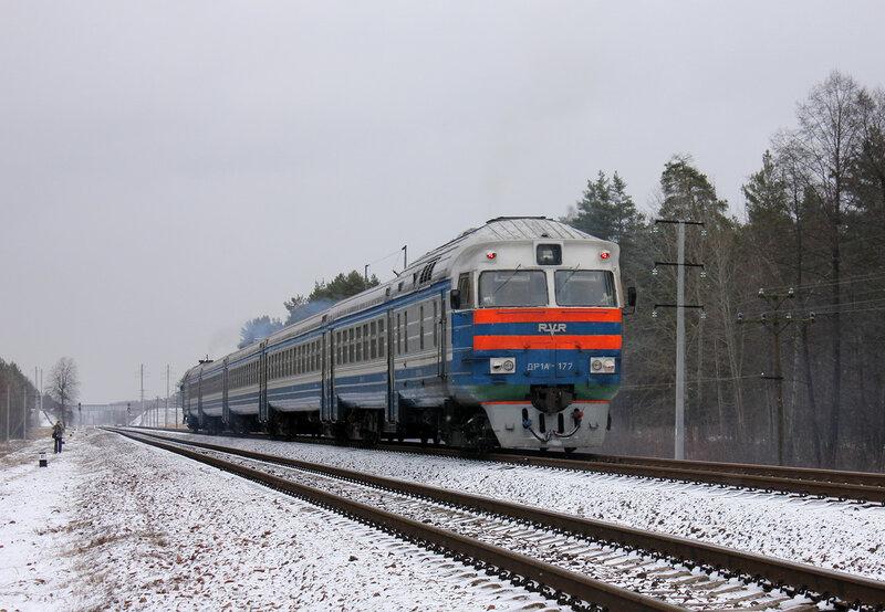 ДР1А-177 на перегоне Новобелицкая - Лисички
