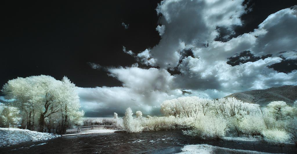 Winterized, Greg Westfall280.jpg