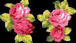 розовые цветы 1 (9).png