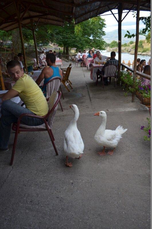 Ниагара в Черногории