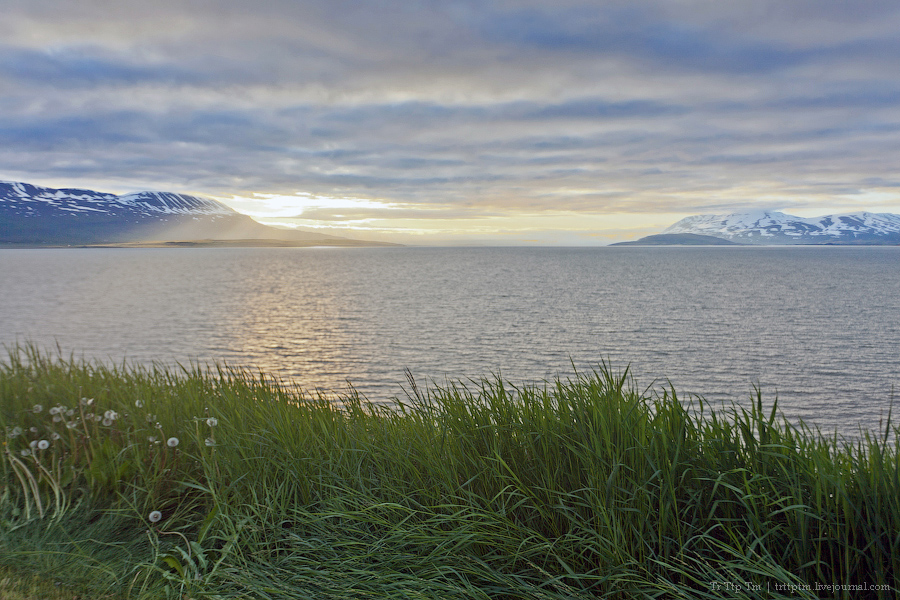 10. Дороги Нордюрланда и киты залива Скъяльфанди.