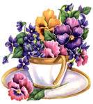 flower_81y.png