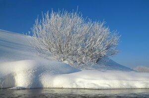 В студеную зимнюю пору...