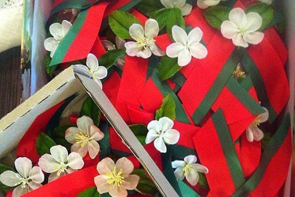 Белоруссия променяла георгиевскую ленточку на'цветок Великой Победы