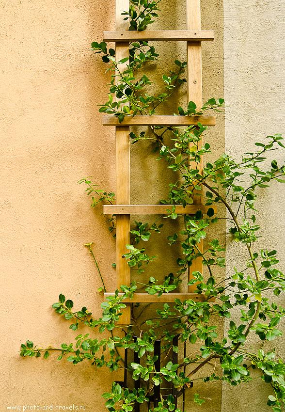 20. Просто стена и лестница