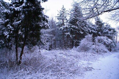 А.Капустян. Фото. DSC04561 (11).jpg